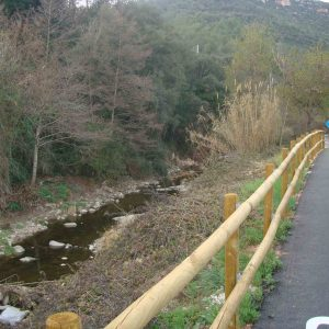 bike_road_beside_the_river_20160308_1009583853