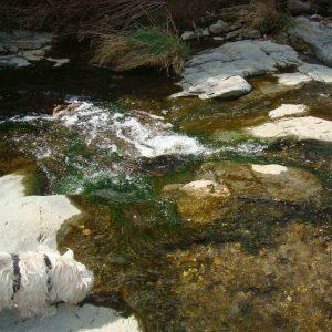 congost_river_20160307_1248761908
